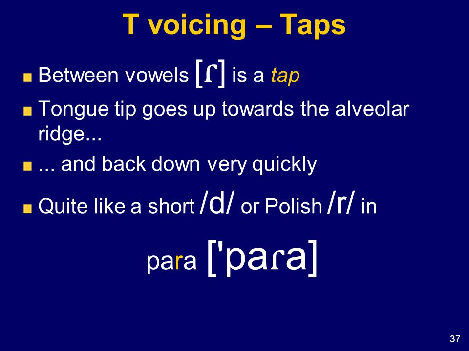 T voicing – Taps para [ paɾa] Between vowels [ɾ] is a tap